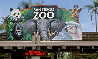 San Diego Zoo Airport Car Service