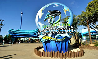 Sea World Airport Transportation
